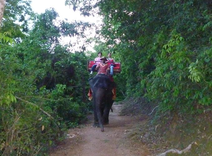 angkorwat_elephant
