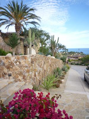 家の前の坂道から海がみえる
