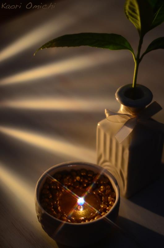 candle.night800_3.jpg