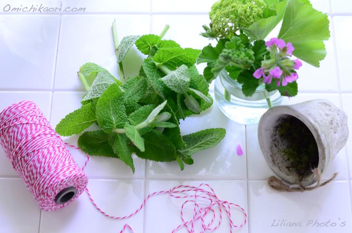 herbs2013may_2.jpg
