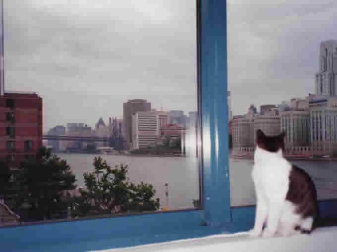 ニューヨーク市内(90年代中頃〜後半)