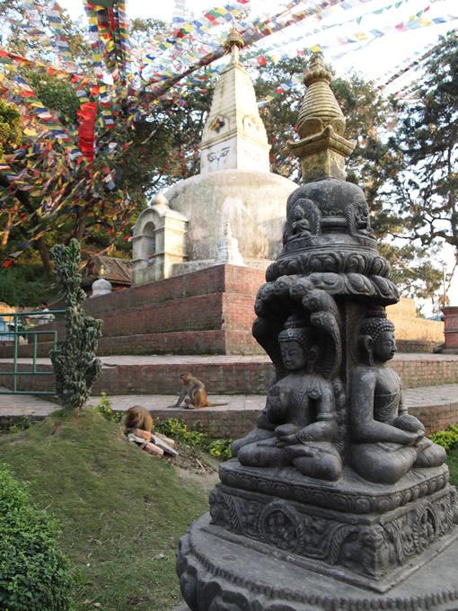 nepal_temple_monckys680