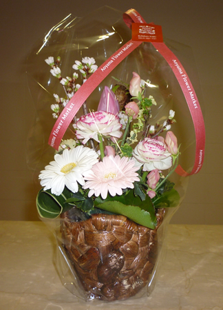 springflower450