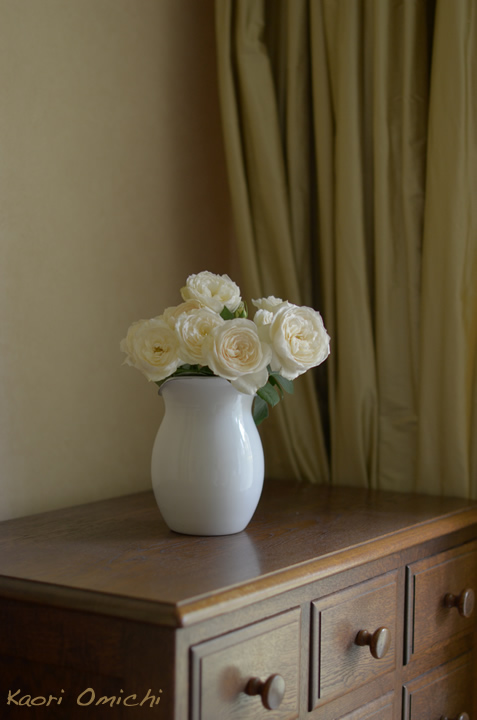 white.rose720_1.jpg